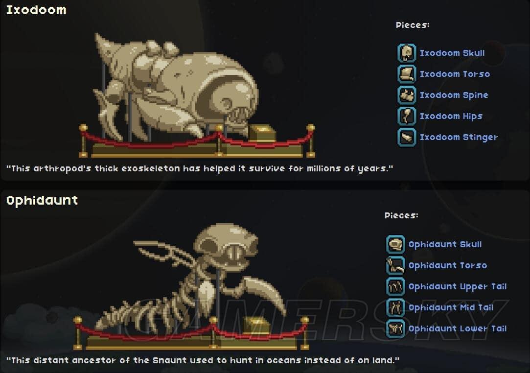 星界邊境 考古玩法技巧攻略與骨頭大全 考古攻略