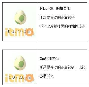 【攻略】Pokemon GO 高效率孵蛋技巧 怎麼快速孵蛋