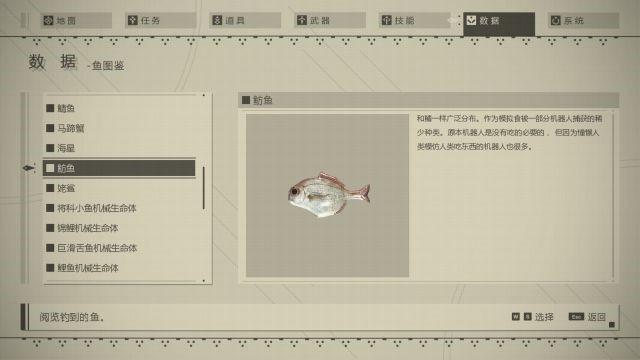 尼爾 自動人形 釣魚完全教學及魚類圖鑑