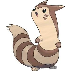 【攻略】 Pokemon GO 大尾立屬性圖鑑 大尾立怎麼樣