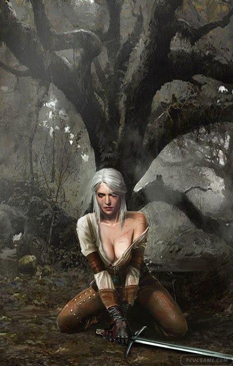 《巫師3:狂獵》角色同人圖 美艷細緻無比如壁紙