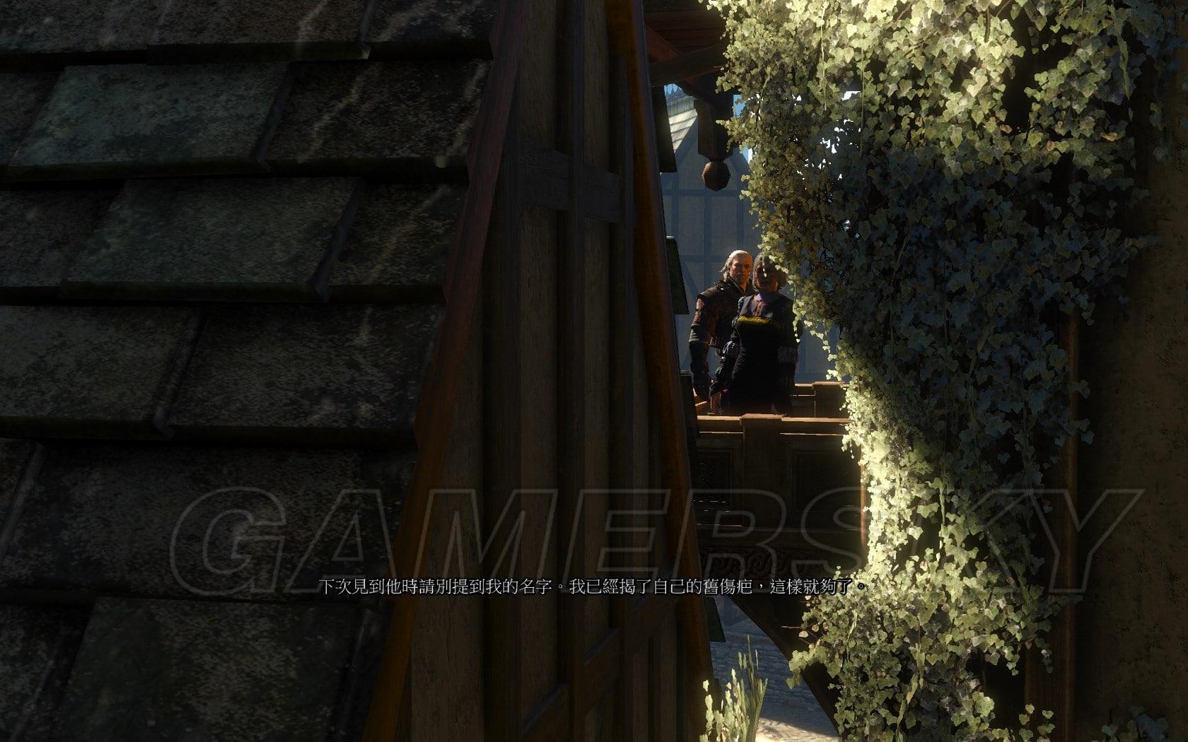 巫師3 DLC石之心拍賣會老婦人劇情詳解