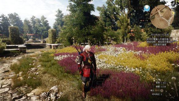 巫師3 DLC石之心薔薇騎士套裝獲得攻略 巫師3薔薇騎士套裝怎麼獲得